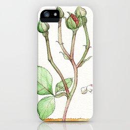 Rose Backbend iPhone Case