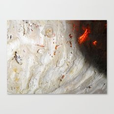 Flaming Seashell 2 Canvas Print