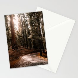 Walking Sequoia 4 Stationery Cards