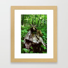 Tree Down Framed Art Print