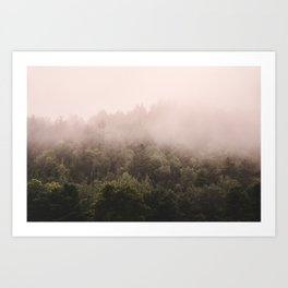 Pink Foggy Forest Landscape Photography Nature Earth Art Print