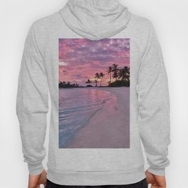 SUNSET AND PALM TREES Hoody