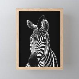 Zebra Black Framed Mini Art Print