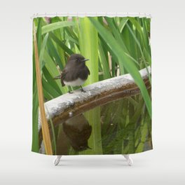 Black Phoebe at the Fountain Shower Curtain