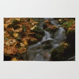 Forest Creek Amongst The Leaves Rug