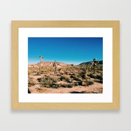 Joshua Trees in Joshua Tree Framed Art Print