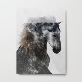 Proud Stallion alt. version Metal Print