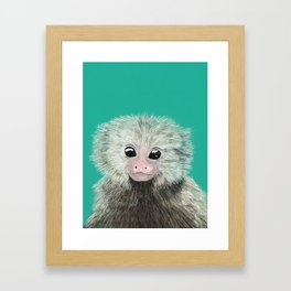 Lily likes ouistitis Framed Art Print