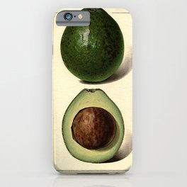 Vintage Botanical Avocado iPhone Case