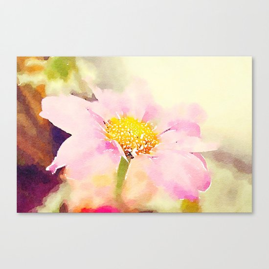 Pink 1 Canvas Print