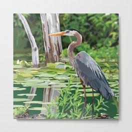 Great Blue Heron in Marsh Metal Print