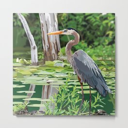 Great Blue Heron in Marsh Metal Print