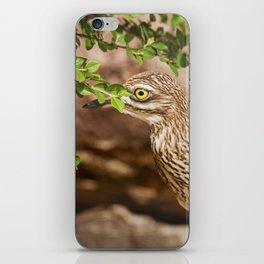 Taking a closer look iPhone Skin