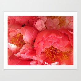 "Pink Camellias ""Angels Flowers"" Art Print"