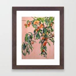 Foliage II / Peach Tree Framed Art Print