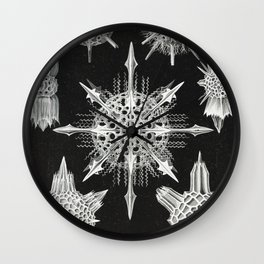 Black and white Marine creatures illustration by Ernst Haeckel Wall Clock