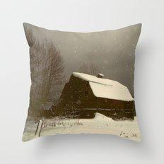 Barnstorm! Throw Pillow