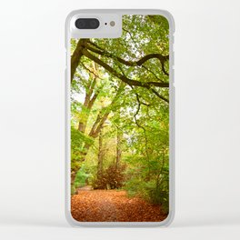 Path in the forest Nature Clear iPhone Case