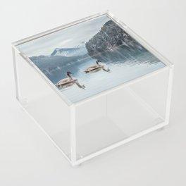 Couple of swans, Alpsee lake Acrylic Box