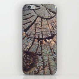 Age of a tree iPhone Skin