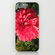Blooming Just For You Slim Case iPhone 6s