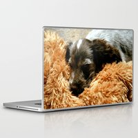 coco Laptop & iPad Skins featuring Coco by Sandra Ireland Images