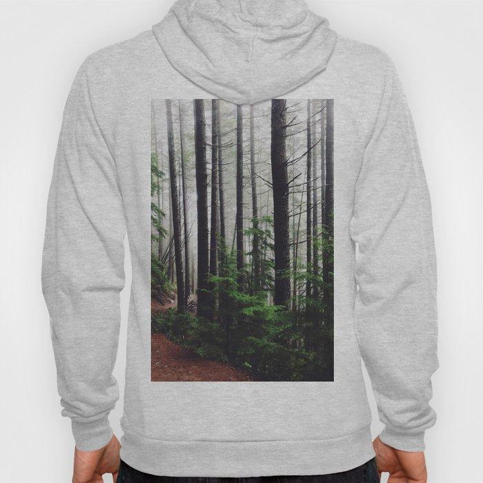 Forest Walk Hoody