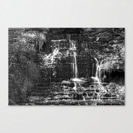 Monochrome Beulah Falls Canvas Print