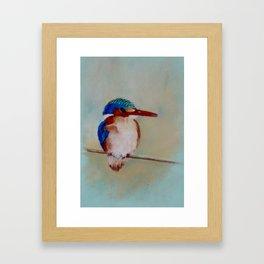 Malachite Kingfisher Framed Art Print