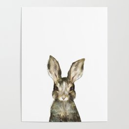 Little Rabbit Poster