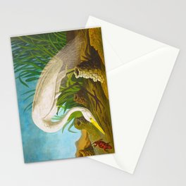 White Heron John James Audubon Scientific Illustration Birds Of America Drawings Stationery Cards