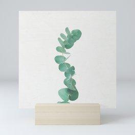 Eucalyptus III Mini Art Print