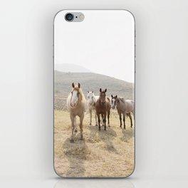 Mountain Horses iPhone Skin