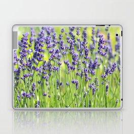 Lavender 0137 Laptop & iPad Skin