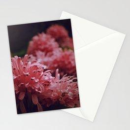 Pink Bellingrath Floral Stationery Cards