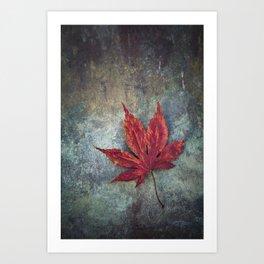 Maple leaf Art Print