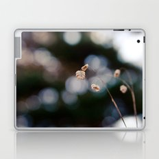 Field of Forgotten Dreams Laptop & iPad Skin