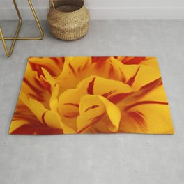 A Chaos of Reds and Yellows: in the Heart of a Triandrus Daffodil Rug