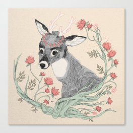 The deer from the forest Canvas Print
