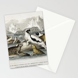 Harp Seal (Male and Female) Pennants Pied Seal Marbled Seal Common Seal of the Scotch Coasts Walrus Stationery Cards