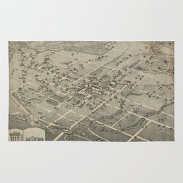 Denton 1883 Rug