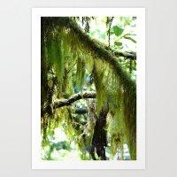 moss Art Prints featuring Moss by T & K Arts