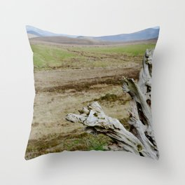 Rooted in Bogs Throw Pillow