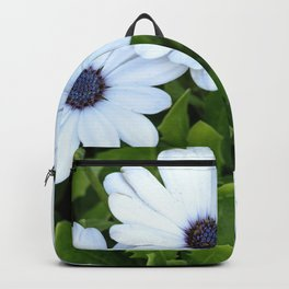 2017-09-22 Backpack