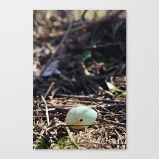 Rested. Canvas Print