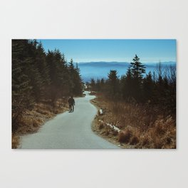 Path up the Great Smoky Mountains Canvas Print