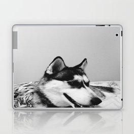 Koda Laptop & iPad Skin