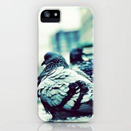 Pidgeons Of 6th Street iPhone Case