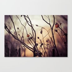 Last of autumn Canvas Print