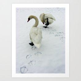 Goose Tracks Art Print